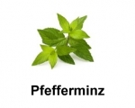E-Liquid DIY Pfefferminz, 10ml